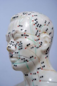 Head Model of Acupuncture Meridians